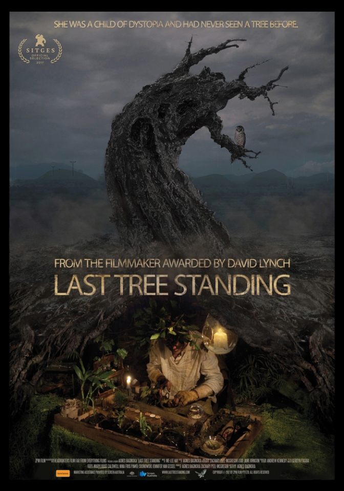 last-tree-standing-cinema-australia
