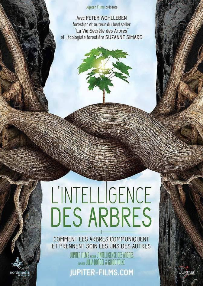 TREES_AFFICHE_A4_NEUTRE
